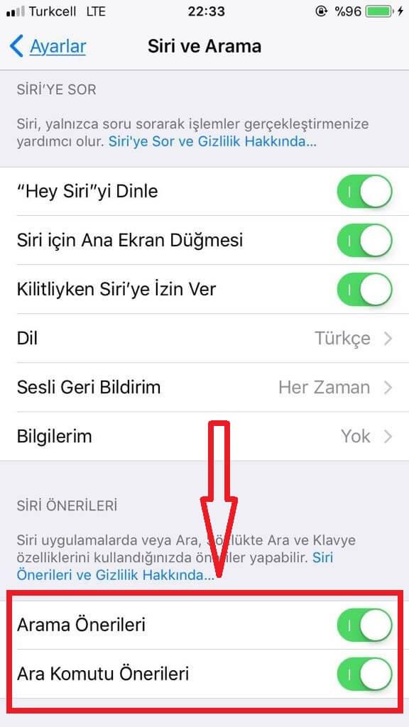 Siri ve Arama