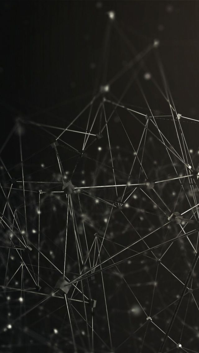 3D Connected Wires Network Render iPhone 5 Wallpaper