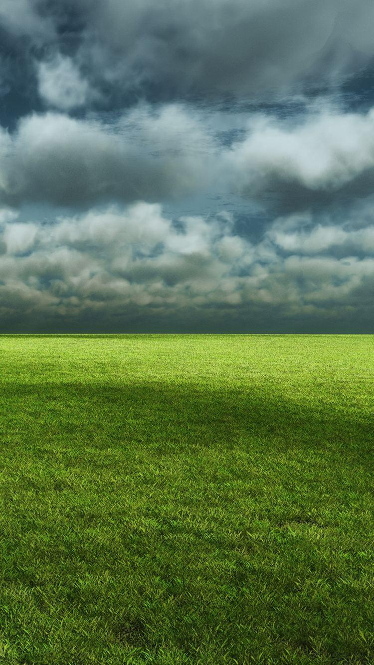 Cloudy Field Green Grass iPhone 6 Wallpaper
